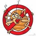 Уничтожение сколопендры